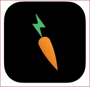 Rabbit Inc. seeks debt raise ahead of A-round<br>for Carrot power-bricks rental kiosks